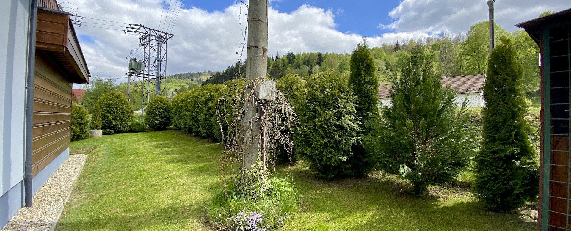 pohľad na stromy v záhrade