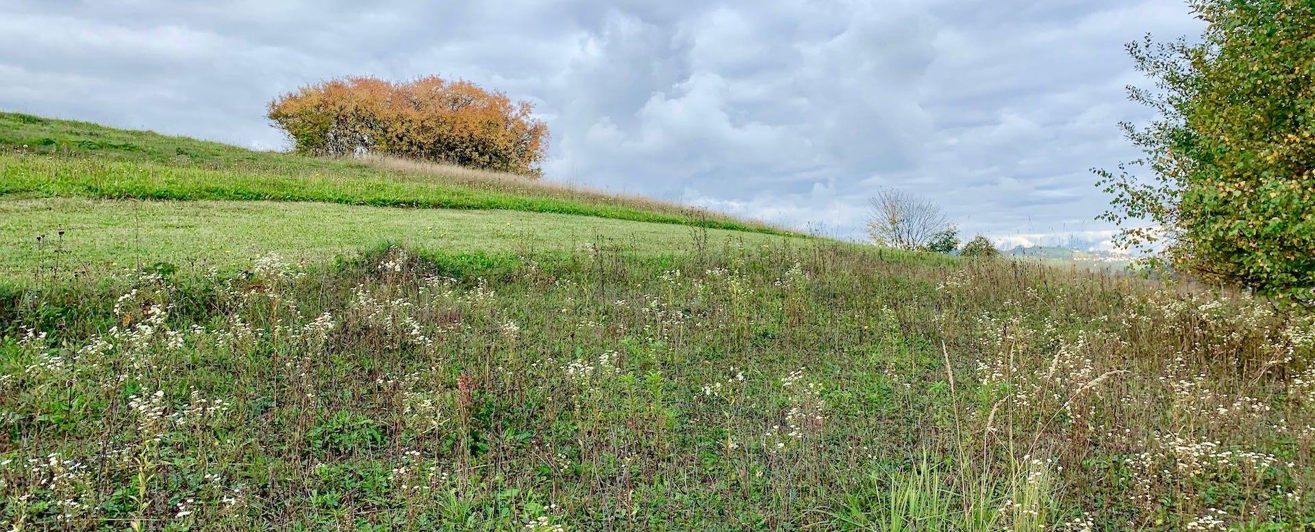 Stavebný pozemok v obci Skalité okre Čadca