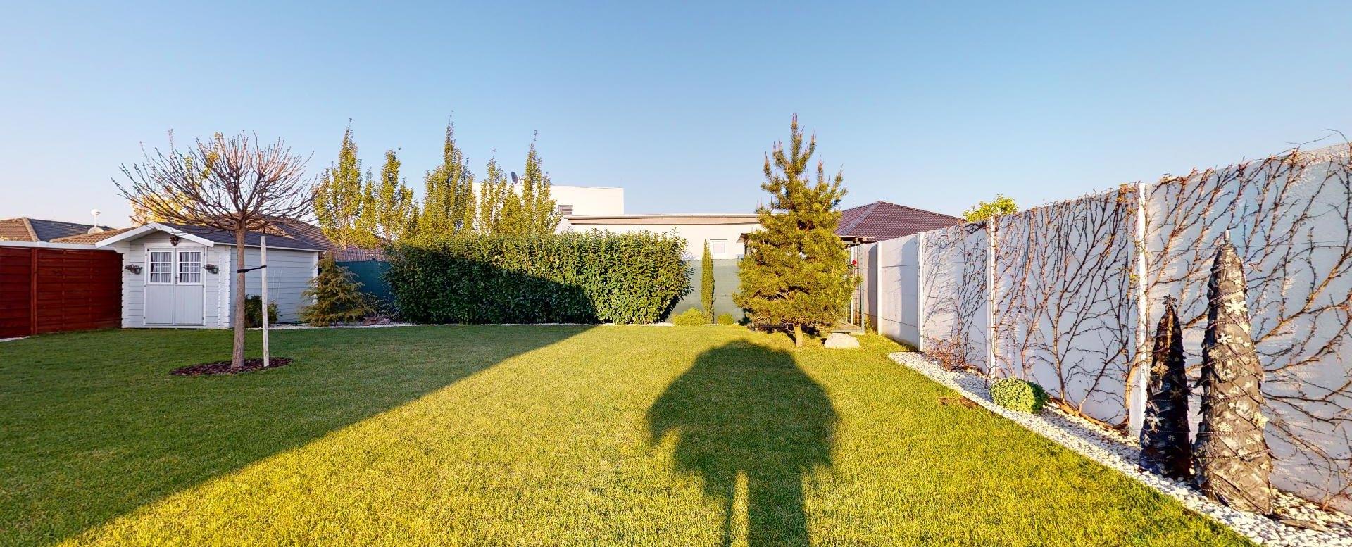 pohľad na záhradu a borovicu