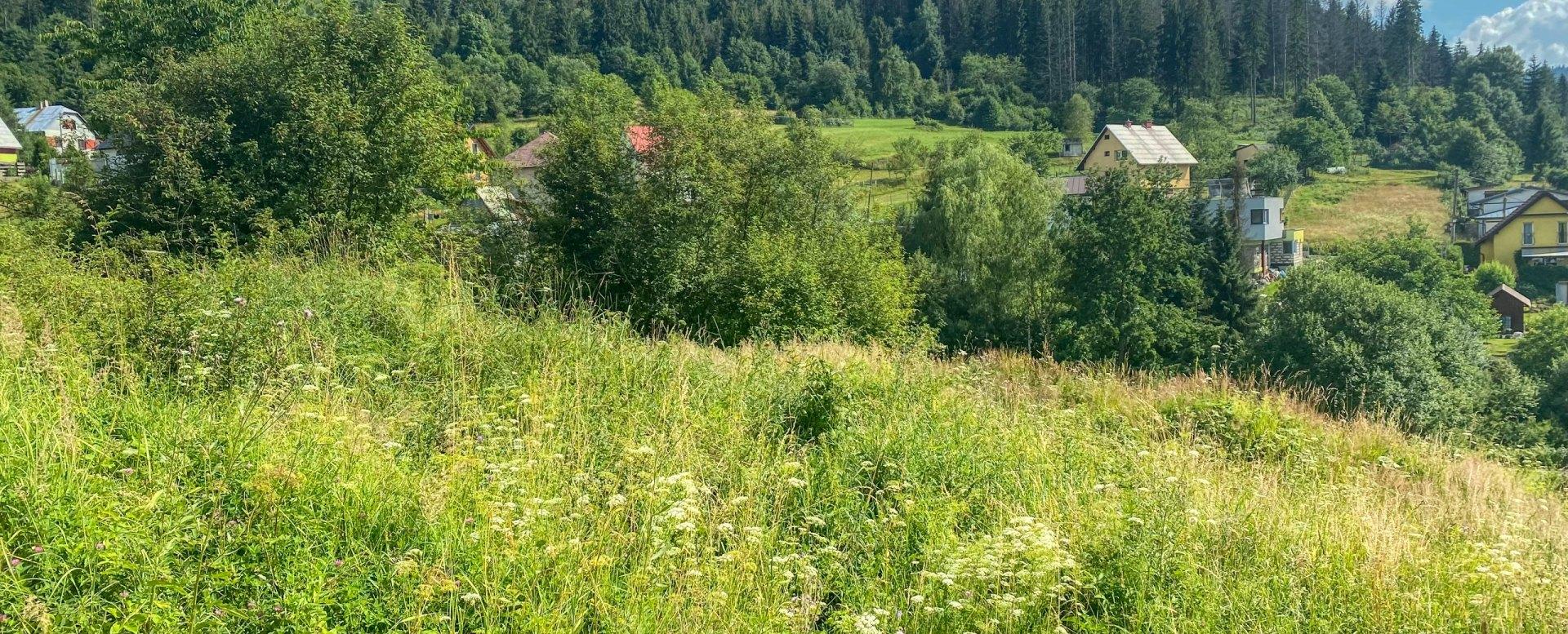 Pohľad na prírodu v okolí stavebného pozemku