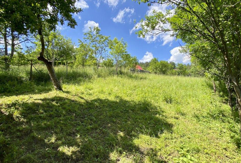 Zeleň na pozemku