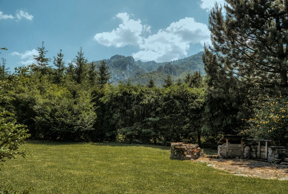 Exteriér drevenice so 607 m2 pozemkom