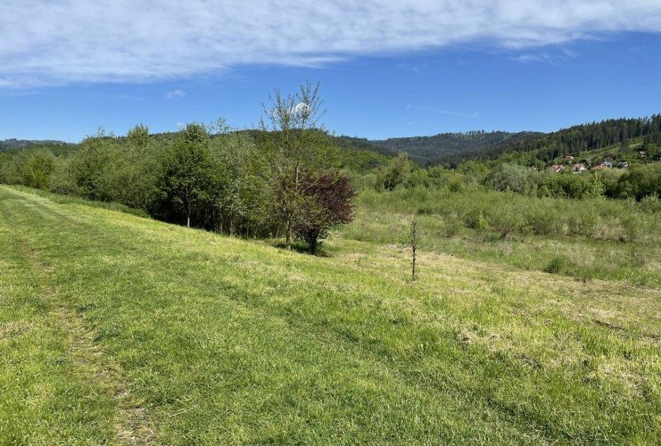 Okolitá príroda obce Horný Hričov