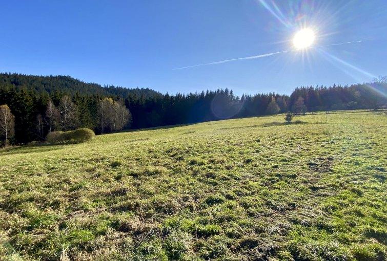 Poľnohospodárske a lesné pozemky v obci Korňa